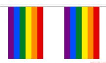 RAINBOW BUNTING - 18 METRES 30 FLAGS